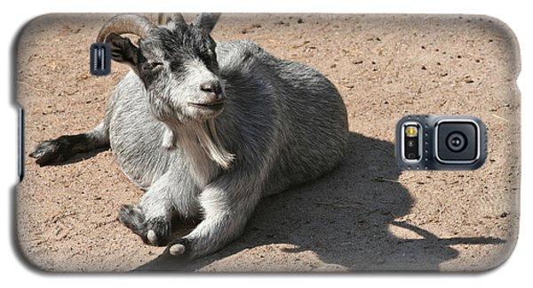Happy Goat Galaxy S5 Case