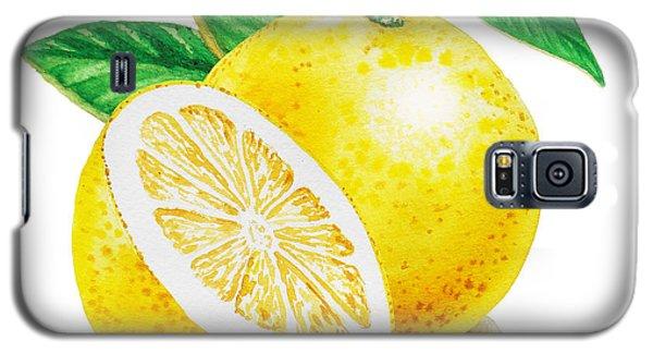 Happy Grapefruit- Irina Sztukowski Galaxy S5 Case