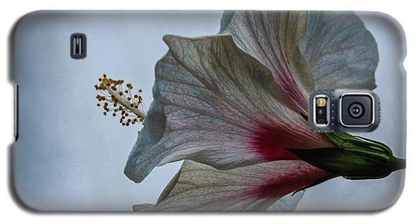 Galaxy S5 Case featuring the photograph Happy Hibiscus At Biltmore Conservatory by Lori Miller