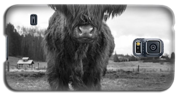 Happy Highland Cow Galaxy S5 Case by Sonya Lang
