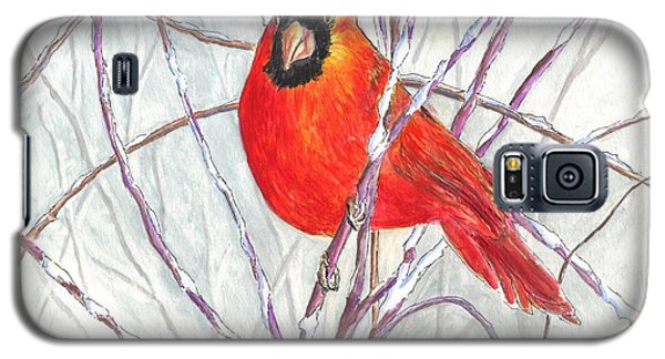 Happy Holidays Snow Cardinal Galaxy S5 Case