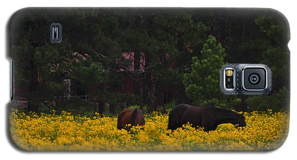 Galaxy S5 Case featuring the photograph Happy Horses by Tom Kelly