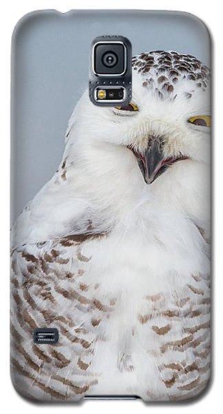 Happy Snowy Owl Galaxy S5 Case