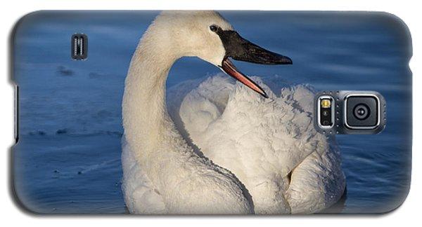 Happy Swan Galaxy S5 Case by Patti Deters