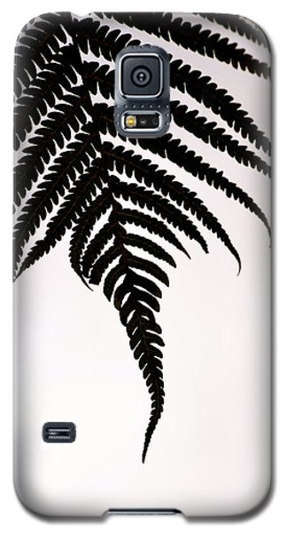 Hapu'u Frond Leaf Silhouette Galaxy S5 Case by Lehua Pekelo-Stearns