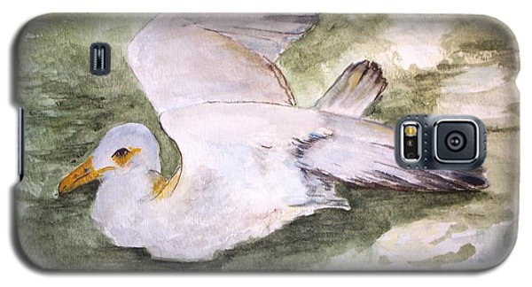 Harbor Sea Gull Galaxy S5 Case by Carol Grimes