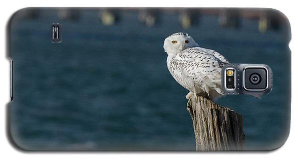 Harbor Sentry Galaxy S5 Case by Stephen Flint