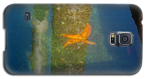 Harbor Star Fish Galaxy S5 Case