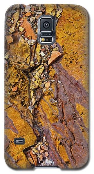 Hard Candy Galaxy S5 Case
