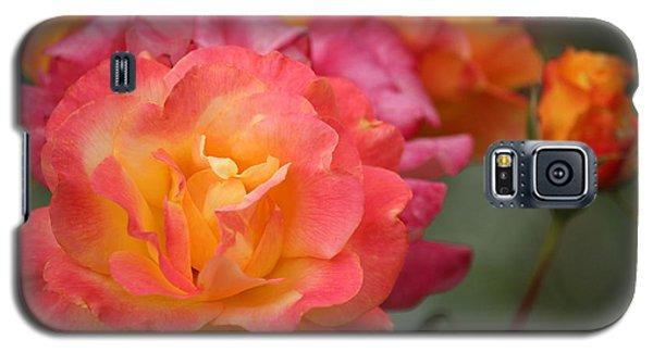 Galaxy S5 Case featuring the photograph Harmony by Rowana Ray