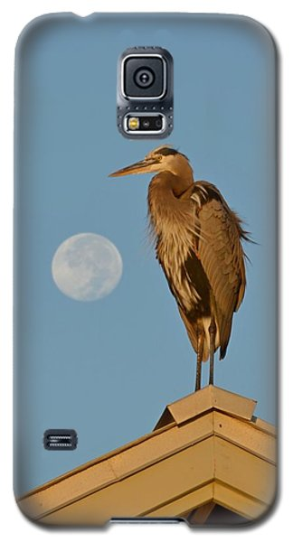 Galaxy S5 Case featuring the photograph Harry The Heron Ponders A Trip To The Full Moon by Jeff at JSJ Photography
