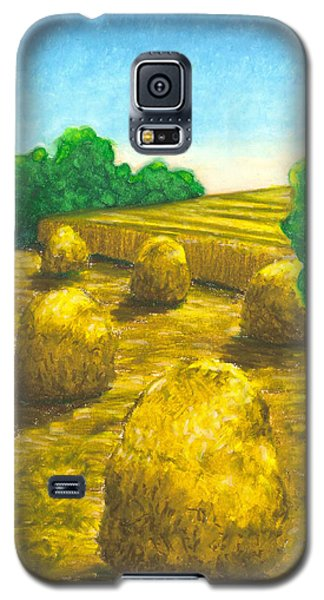 Harvest Gold Galaxy S5 Case