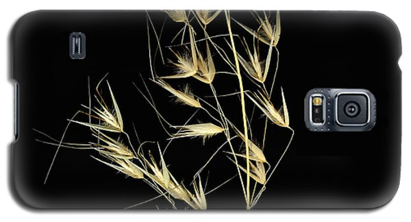 Galaxy S5 Case featuring the photograph Harvest by Marwan Khoury