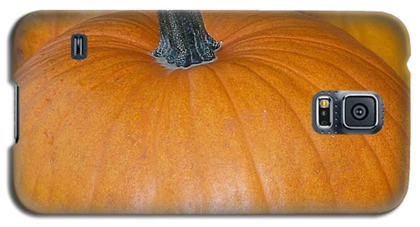 Galaxy S5 Case featuring the photograph Harvest Pumpkins by Chalet Roome-Rigdon