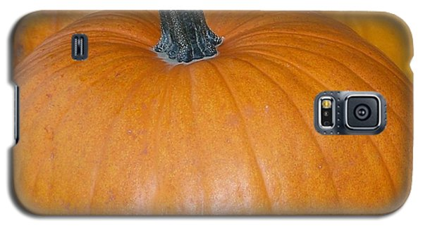 Harvest Pumpkins Galaxy S5 Case by Chalet Roome-Rigdon