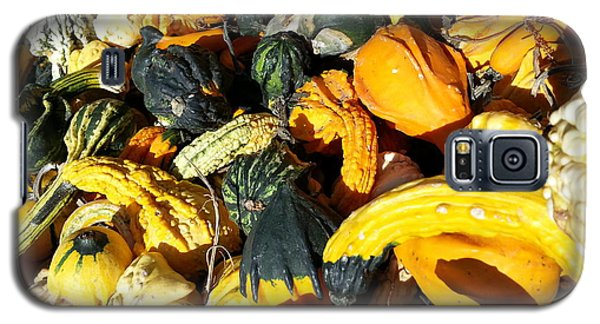 Galaxy S5 Case featuring the photograph Harvest Squash by Caryl J Bohn