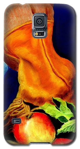 Harvest Time Pastel Galaxy S5 Case by Antonia Citrino