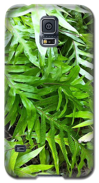 Hawaiian Foliage Galaxy S5 Case