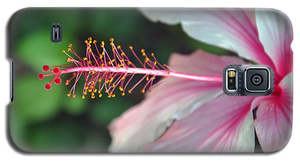 Galaxy S5 Case featuring the photograph Hawaiian Hibiscus by Gina Savage