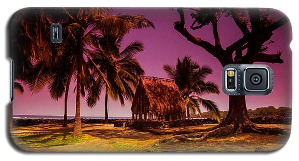 Hawaiian Jail Galaxy S5 Case by Randy Sylvia