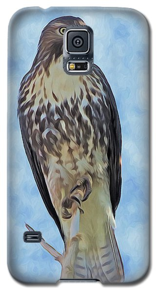 Hawk By Frank Lee Hawkins Galaxy S5 Case