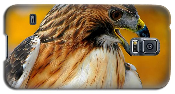 Hawk Hunt Galaxy S5 Case
