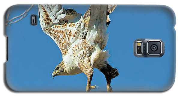 Galaxy S5 Case featuring the photograph Hawk Lift Off by Stephen  Johnson