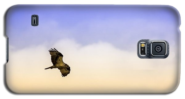 Osprey Galaxy S5 Case - Hawk Over Head by Marvin Spates