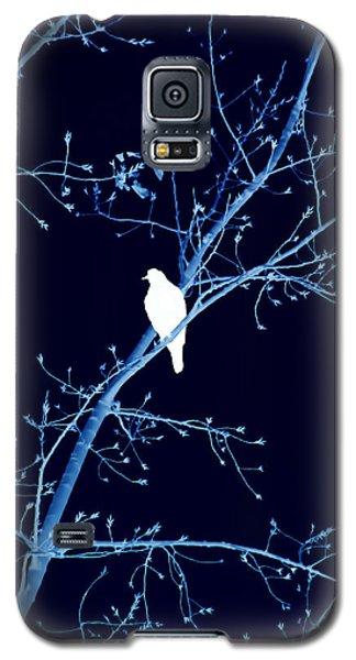 Hawk Silhouette On Blue Galaxy S5 Case by Lesa Fine