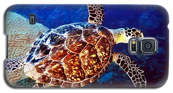 Hawksbill Galaxy S5 Case