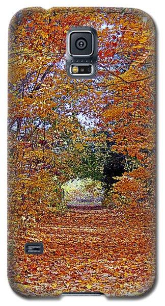 Hawthorn Hollow Galaxy S5 Case