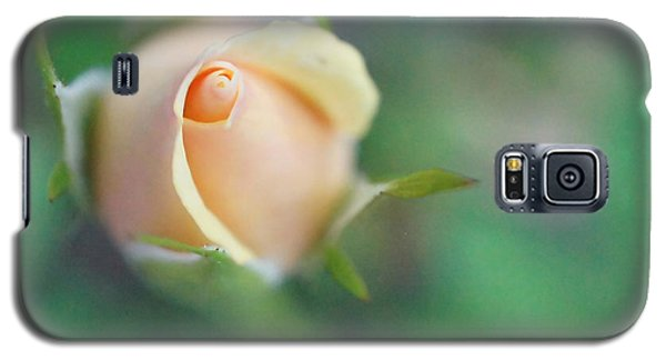 Galaxy S5 Case featuring the photograph Hazy Rosebud Squared by TK Goforth