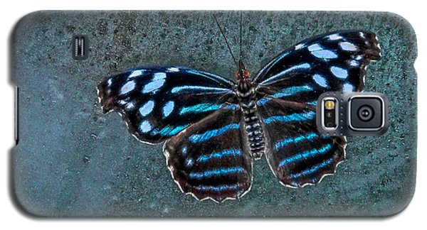 Hdr Butterfly Galaxy S5 Case by Elaine Malott