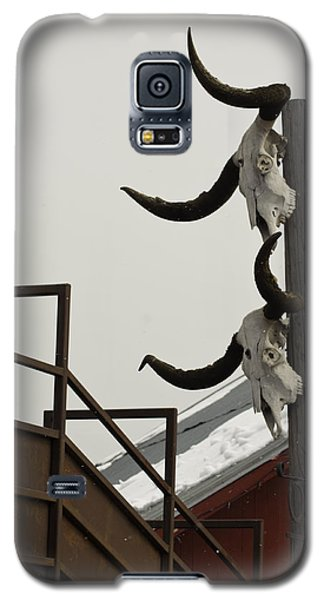 Head Em Up N Move Em Out Galaxy S5 Case by Daniel Hebard