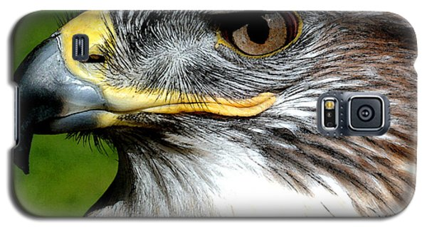 Head Portrait Of A Eagle Galaxy S5 Case