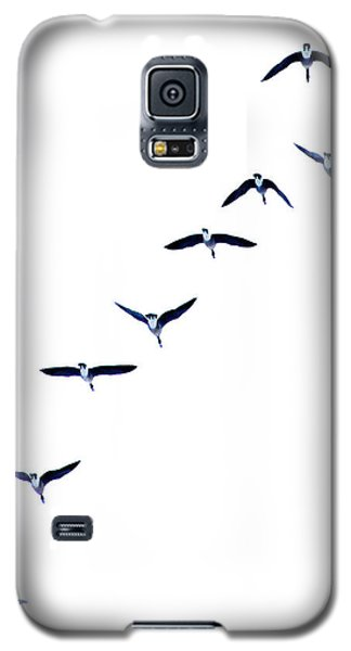Galaxy S5 Case featuring the photograph Heading North by Brian Davis