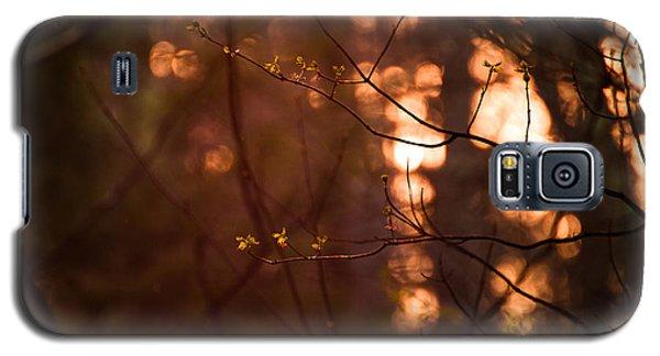 Healing Light Galaxy S5 Case