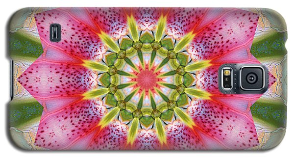 Galaxy S5 Case featuring the photograph Healing Mandala 25 by Bell And Todd