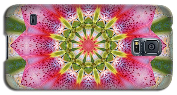 Healing Mandala 25 Galaxy S5 Case by Bell And Todd