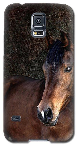 Heart Galaxy S5 Case by Karen Slagle