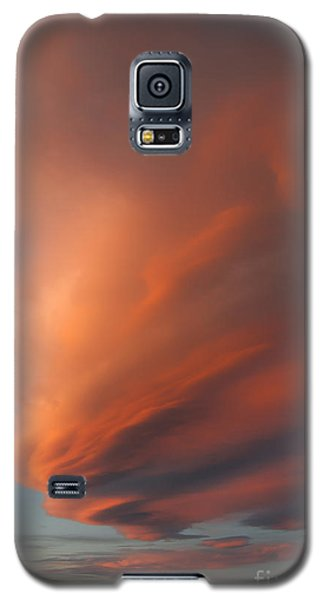 Heart Mountain Cirrus Sunset-signed Galaxy S5 Case
