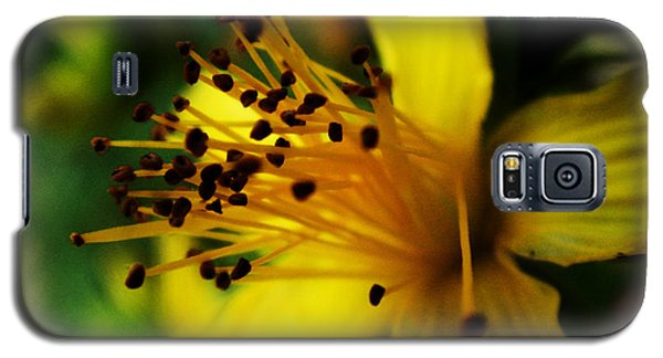 Galaxy S5 Case featuring the photograph Heart Of A Flower by Zinvolle Art