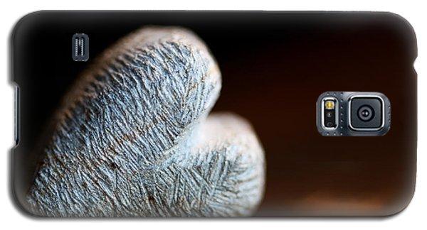 Heart Of Stone Galaxy S5 Case