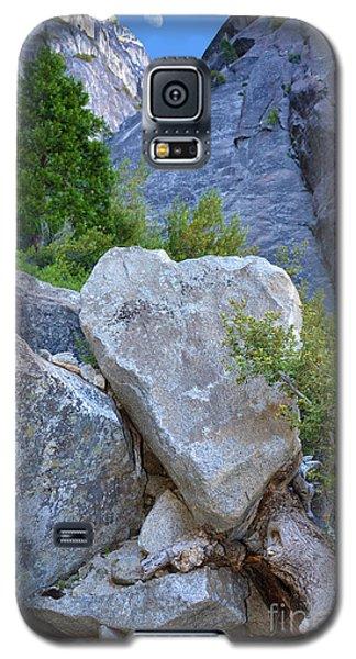 Heart Rock In Yosemite Galaxy S5 Case