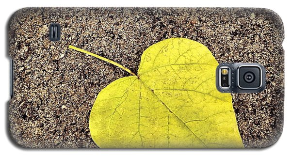 Heart Shaped Leaf On Pavement Galaxy S5 Case
