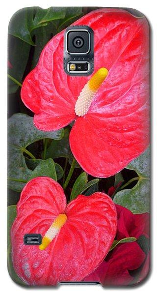 Heart To Heart Galaxy S5 Case
