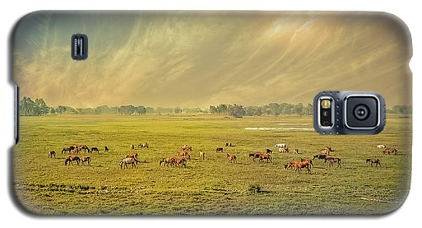 Heat N Dust - Indian Countryside Galaxy S5 Case