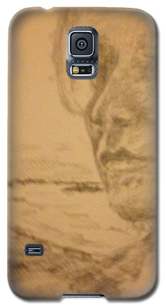 Heather Galaxy S5 Case by Stan Tenney