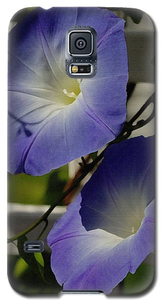 Galaxy S5 Case featuring the photograph Heavenly Blue Morning Glory by James C Thomas