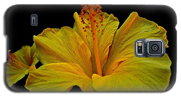 Heavenly Hibiscus Galaxy S5 Case by Eve Spring
